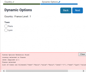 Oracle Policy Automation - JavaScript Custom Options - Result Example Two